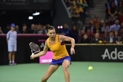 Simona Halep invinsa de Karolina Pliskova in Fed Cup