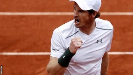 Finala Djokovic - Murray la Roland Garros