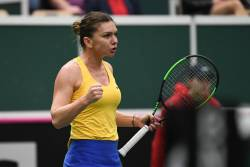 Asa am trait Karolina Pliskova - Simona Halep in Fed Cup